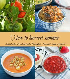 how to harvest summe