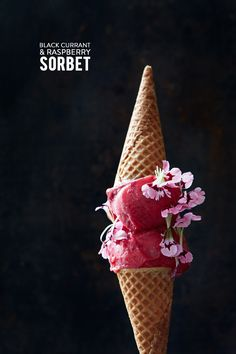 Black Currant & Raspberry Sorbet