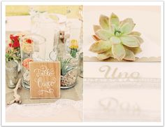 succulent centerpieces and table numbers!  La Quinta Pastel Mexican Wedding by Alchemy Fine Events.  follow us on instagram! alchemyeventsvw