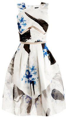 Christopher Kane Dutch print Princess dress