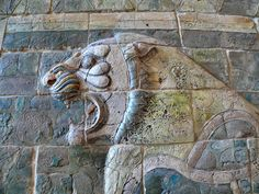 One of the lions from the glazed brick friezes found in the apadana (large hypostyle hall) in Darius the Great's palace in Susa Shush. Darius I (550–486 BCE) was the third king of the Persian Achaemenid Empire. Louvre.