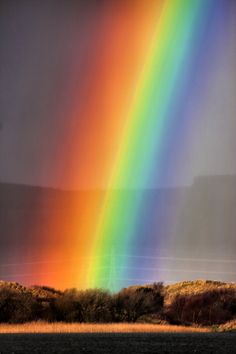✯ Full Spectrum Red, Orange, Yellow, Green, Blue, Indigo and Violet.  Or, as my Art Teacher taught us, ROY G. BIV