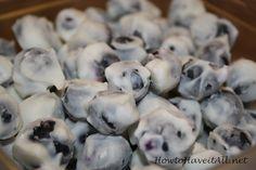 Frozen yogurt berrie