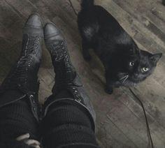 Hello, kitty.