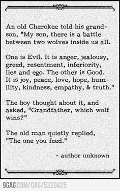 Which do you feed?