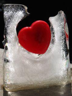melting a frozen heart . . . lol