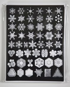 A beautifully designed take on the holiday card featuring Snowflake Bentley's stunning photographs of snow crystals. Snow crystal cards, set of 10. $15.00.