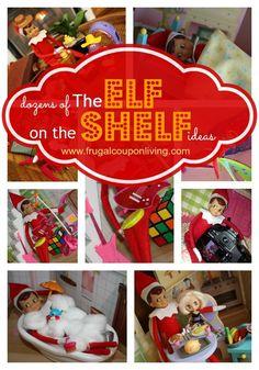 Dozens of Elf on The Shelf Ideas on Frugal Coupon Living #ElfontheShelf #Christmas http://www.frugalcouponliving.com/elf-on-the-shelf-ideas/