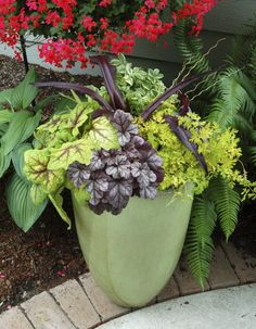 container garden - This will work well in my container that looks just like this!