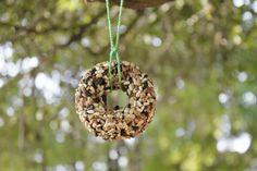 bird seed rings...using donut pan
