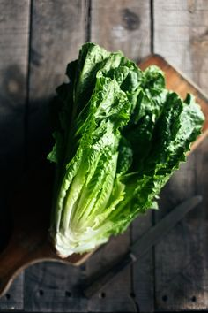 In season - May, lettuce