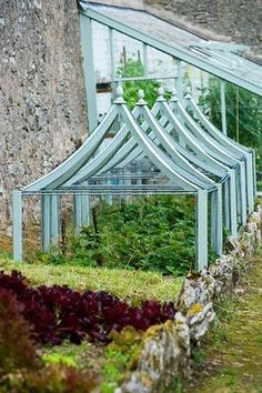 pale blue cloches in vegetable garden, greenhouse in blue too
