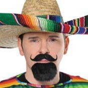 Fiesta Facial Hair Set - Photo Booth