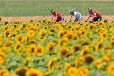 Le Tour de France 2014 Stage 11