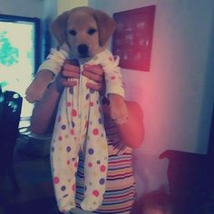 I think I'll have to find some old baby clothes to see if the Roc will look this cute