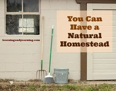 You can have a chemical free, Natural Homestead