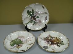 Antique Limoges Haviland Oyster Plates Set of 3 1890 Chips | eBay Available for sale at Eastern Shore Antiques  1410 Suite A  US Hwy. 98. Daphne, Al. 36526