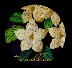 Quilled Petal Liliy