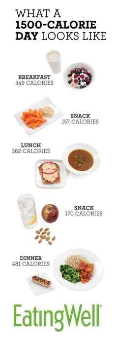 Most people will lose weight on a daily diet of 1,500 calories, which is the total calorie count for all the food pictured