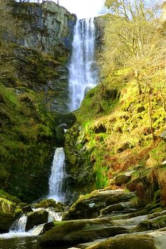 """Pistyll Rhaeadr (the spring of the waterfall) is traditionally described as one of the Seven Wonders of Wales, alongside Snowdon, Llangollen, Wrexham, Overton, Gresford & St Winefride's Well. It falls more than 230 ft in three stages- one through an """"eye"""" of rock - over a 240 feet Silurian cliff. It is the highest waterfall in Wales. At the bottom the river becomes the Afon Rhaeadr and there is a 4 mile walk to the village of Llanrhaeadr-ym-Mochnant, following the aptly named Waterfall Street."""