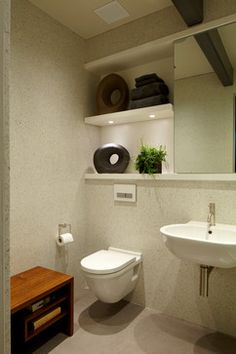 Bathroom Shelves Above Toilet Design, Pictures, Remodel, Decor and Ideas - page 4