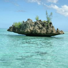 Rock Formation on Sea, Mauritius Island