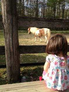 Once upon a time.......a little girl fell in ♥ with horses! Repin if this was you and still is!