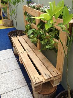 You know how much I love a pallet.  Only About Children Seaforth Campus have made themselves a pallet bench seat for their magic garden.