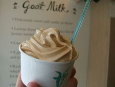 Victory Garden's salted caramel goat milk ice cream. A must try in NYC.  Yum! | Stylish Spoon