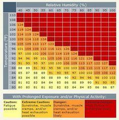 figure the heat index before running ::: RunnerDude's Blog: 10 Tips for Summer Running!