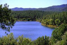 Lynx Lake, Prescott, AZ