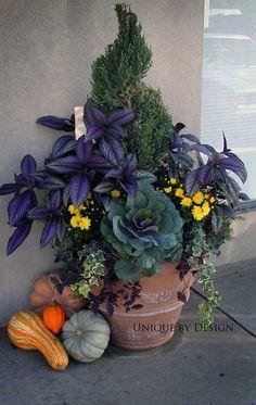 Fall #garden #container #fall
