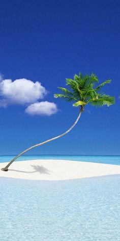 beauti place, beach girl, bora bora