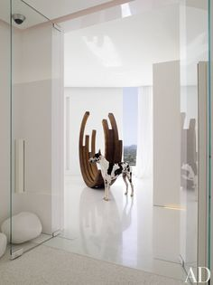 Near the entrance hall of a Miami Beach high-rise apartment, the owners' dog, Zeek, stands in front of a steel sculpture by Bernar Venet.