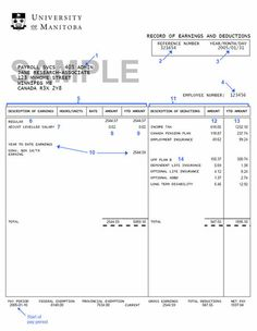 Free Fillable Blank Pay Stubs | on the sample pay stub) More
