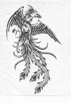 Phoenix Tattoo...this might be the one, reminds me of my griffin :)