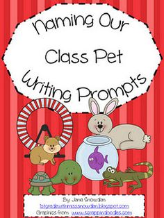Naming Our Class Pet Writing Activity