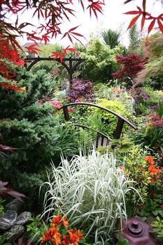 Color and contrast.  // Great Gardens & Ideas //