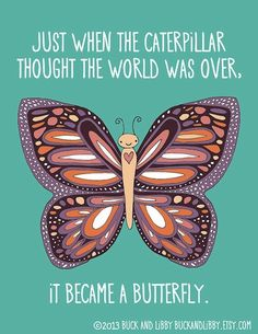 When the Butterfly Thought the World Was Over