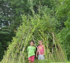 Living Willow Structure:  I plan on making small domes or arbors for the chicken yard!