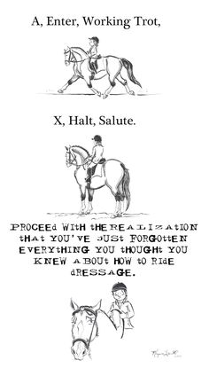 hahahah this is basically how i always felt about dressage tests...no amount of running the patterns on foot in the arena could help me memorize them!