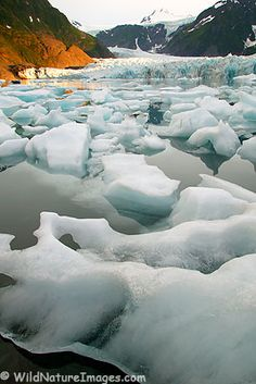 Pedersen Glacier, Kenai Fjords National Park, Alaska.
