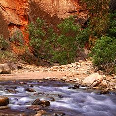 nation park, national parks, rivers, zion national park hikes, gears