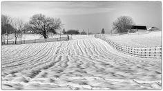 Winter, Lancaster PA.