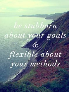be stubborn about your goals & flexible about your methods
