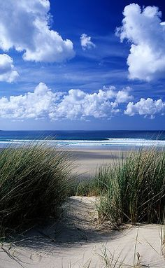 Dunes at Gwithian, near St Ives in Cornwall, UK