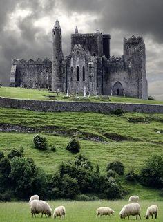 ireland, dream, castles, sheep, places, travel, irish, homes, rocks