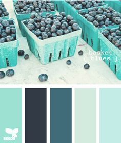 "Blueberries ""Basket Blues"" Color Palette --- My favorite food as a color scheme for a room. Love it! Great idea to do with your favorite outfit, painting, photo, etc. Deconstruct it!"