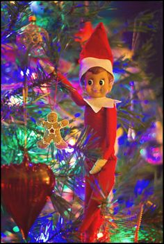 holiday christma, hang ornament, shelf idea, elf fun, shelf stand