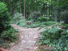 reclaimed brick from my neighbor's patio when he tore it up. Set up new paths through the beds and sprinkled dry mortar in between. Lush foliage accents the rustic feel.